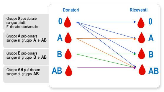 AVIS-i-gruppi-sanguigni